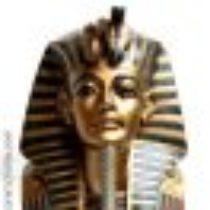 Profilbild von amenophys